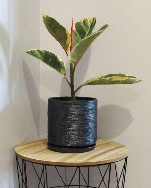 Керамический горшок Цилиндр темно-серый - Фото 3
