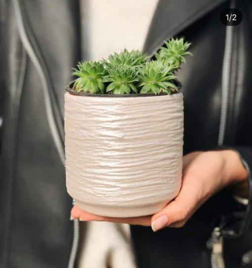 Керамический горшок Цилиндр серый - Фото 2